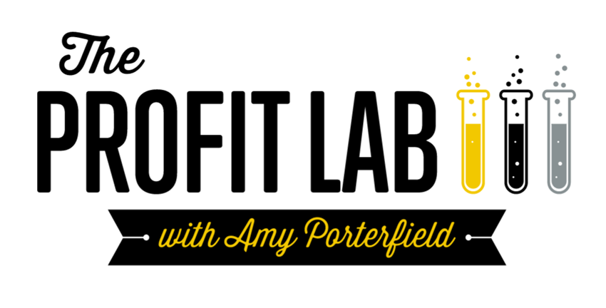 Image result for Amy Porterfield – Facebook Marketing Profit Lab