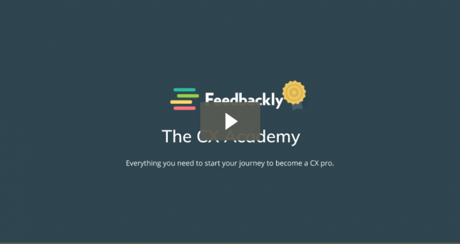 Download CX Academy – Customer Experience 101